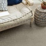 Pawparazzi carpet floor | Home Lumber & Supply