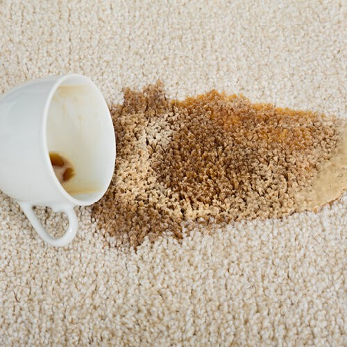 Tips to remove Stain on Carpet | Home Lumber & Supply