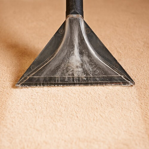 carpet cleaning | Home Lumber & Supply